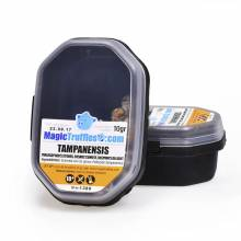 10 grams – Tampanensis – Magic Truffles