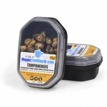15 grams – Tampanensis – Magic Truffles
