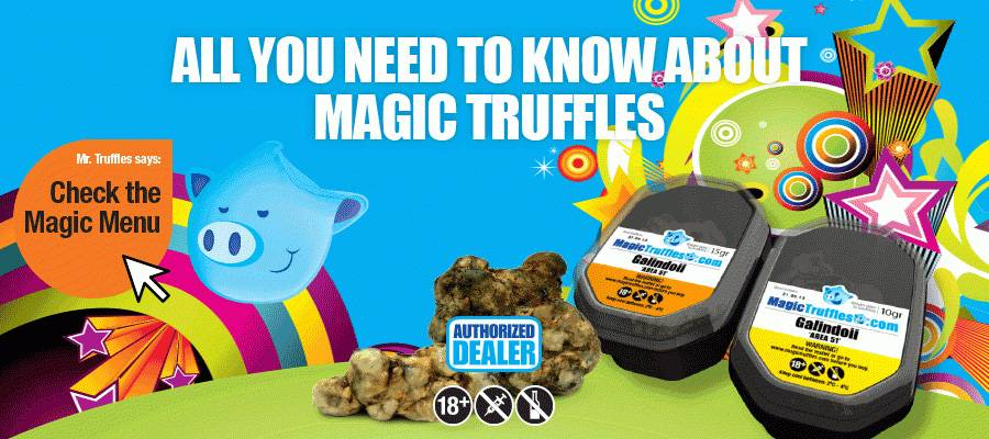 Magic Truffles